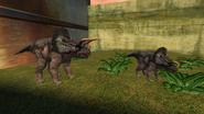 Turok Evolution Triceratops (14)