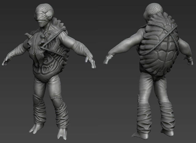 File:Turtleman.jpg