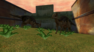 Turok Evolution Wildlife - Parasaurolophus (3)