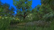 Turok Evolution Levels - Jungle Hunter (4)