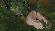 Turok Evolution Levels - Jungle Hunter (1)