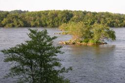 File:256px-Susquehanna River 700.jpg