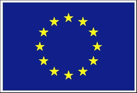 File:EUFlag.jpg