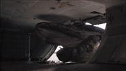 Giganotosaurus-11
