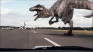 Giganotosaurus-9