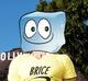 BriceFace