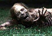 Walking Dead 1x01 001