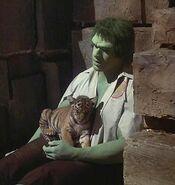 Incredible Hulk 1x04 009