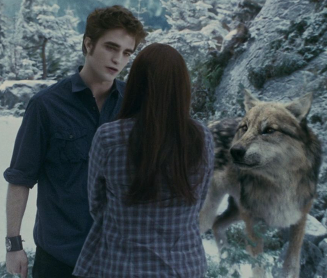 File:Edward-cullen-gallery.png
