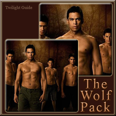 File:11-the-wolf-pack.jpg