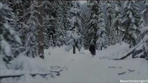 Breaking Dawn; Part Two - Battle Scene.