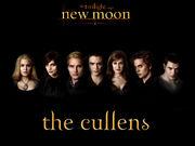 New-Moon-alice-cullen-7286330-1024-768