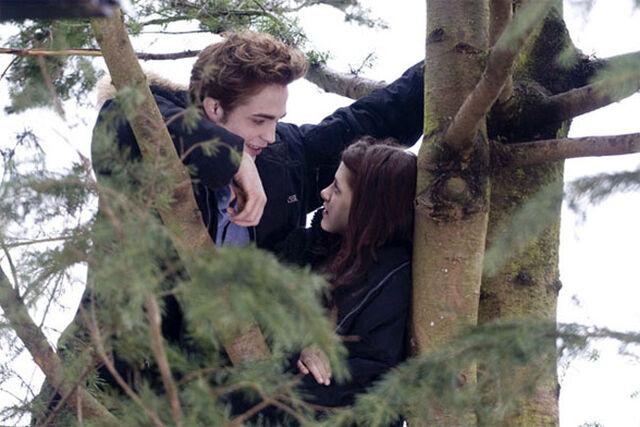 File:Twilight (film) 54.jpg