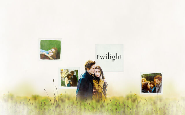 File:Twilight-field-wp.jpg
