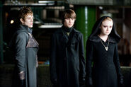 Alec, Jane and Demetri Eclipse