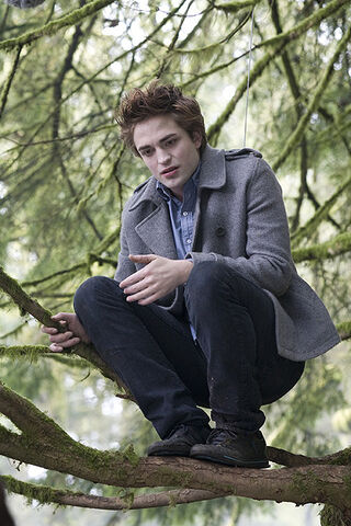File:Twilight (film) 88.jpg