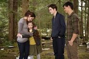 Twilight breaking dawn renesmee