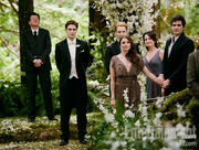 Breaking-dawn-wedding2 610