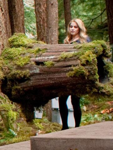 File:Rosalie-tree-log-breaking-dawn.jpg