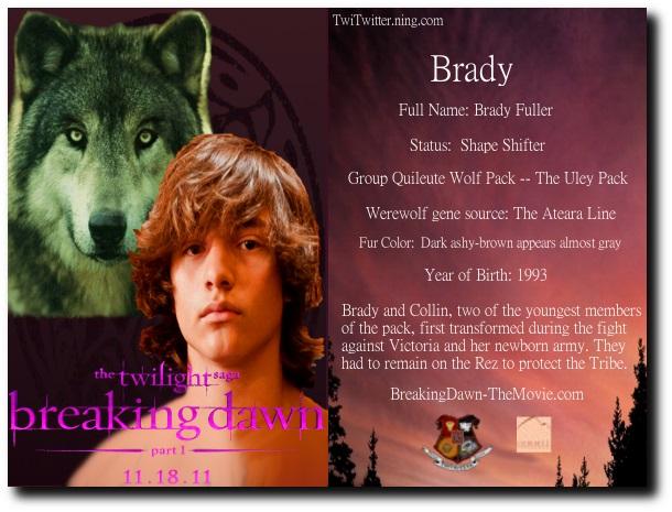 File:BradyCard-Q.jpg