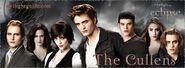 Cullens-graphic