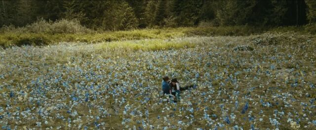 File:Edward and bella in the meadow 5.jpg