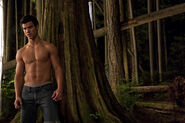 Taylor-as-Jacob-jacob-black-8252886-678-452