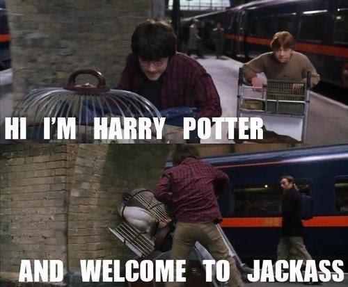 File:Harry-potter-funny-8.jpg