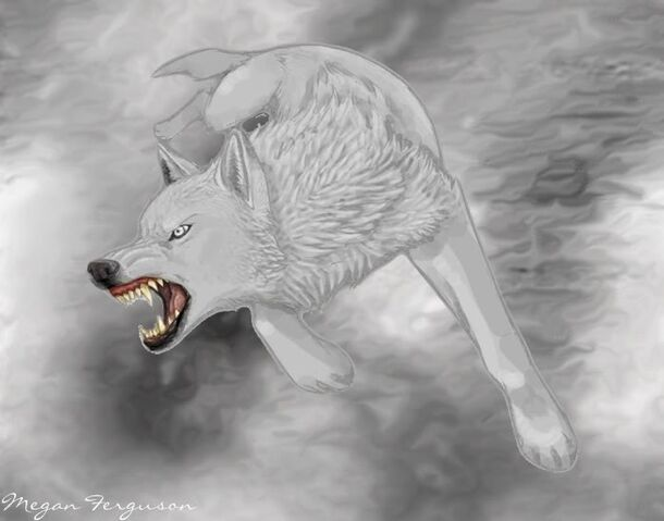 File:White Wolf WIP by KayFedewa1.jpg