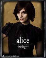 Alice12287