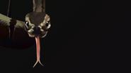 10 tbf cast matt s bomb ass snake by nantonaku-d6k1h1a