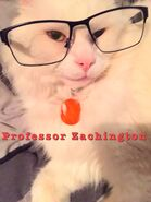 Professor Zachington
