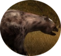 Mainpage button animals.png