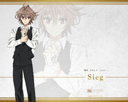 Sieg Wallpaper