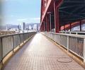 Fuyuki bridge to shinto.png
