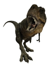 File:Tarbosaurus 04.jpg