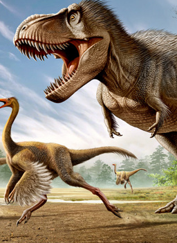 File:Tyrannosaurus feathers.png