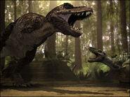 Nanot vs rex