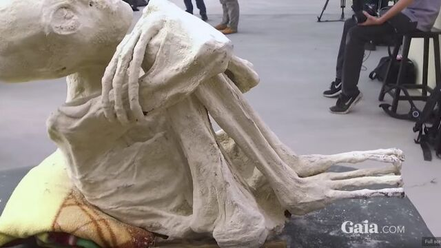 File:Nazca mummy.jpg