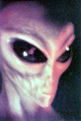 File:Grey alien.jpg