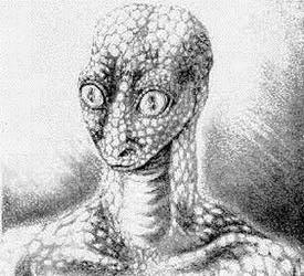 File:Reptilian sketch.jpg