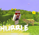 Shubble