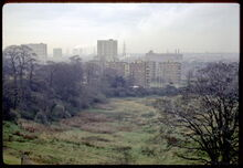 TameValley1968