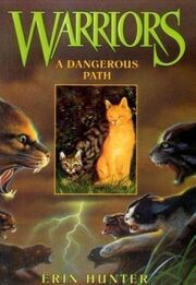 A dangerous path cover