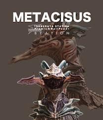 File:Metacisus.jpg