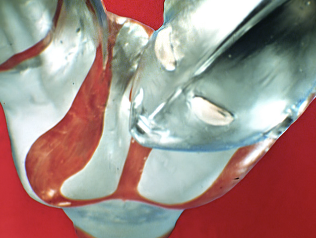 File:Ultraman's rise (noticed he lacked Color Timer).png