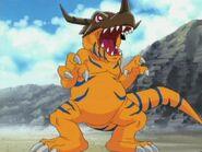 Greymon in Digimon Adventure
