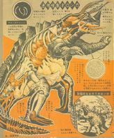 File:Neronga-anatomy.jpg