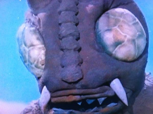 File:Kirigiron's large face!.jpg