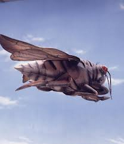 File:King Zemira Cicada.png